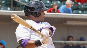 Micah Johnson is one of six newcomers on Baseball America's White Sox Top 10 Prospects list (Laura Marshall/W-S Dash).