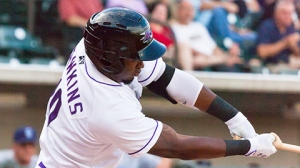 Courtney Hawkins is one of three Top 10 prospects in Winston-Salem (Steve Orcutt/W-S Dash).