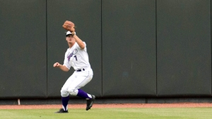 Adam Engel has helped align the defense from centerfield (Jody Stewart/W-S Dash).