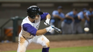Adam Engel leads the Carolina League in runs scored. (Jody Stewart/W-S Dash)